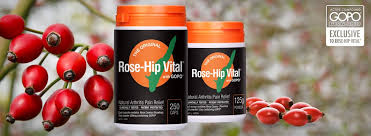 Cancer Patients RoseHip Vital & Grace Gawler